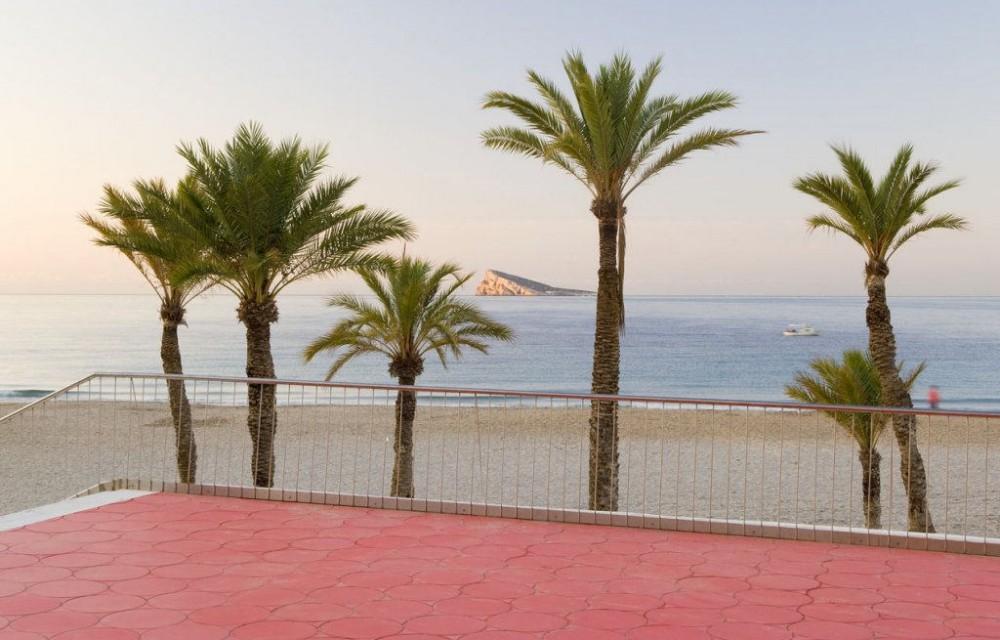 costa blanca benidorm isla y palmeras tarde