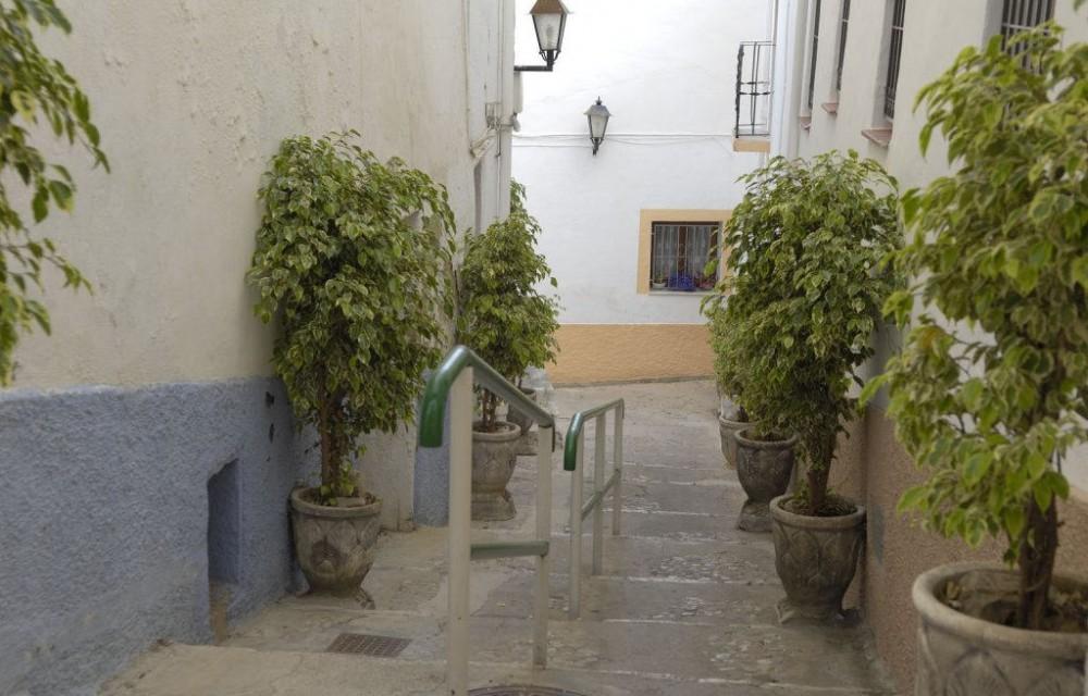 costa blanca calpe plantas en las escaleras