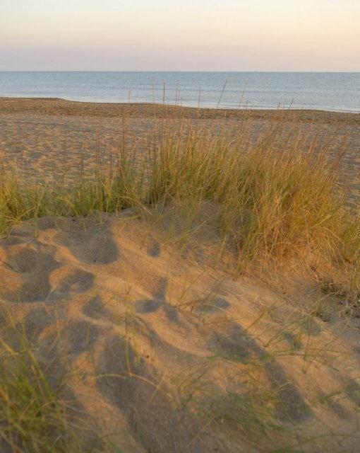 costa blanca els poblets desertica playa almadraba