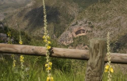 COSTA BLANCA Paisaje en el Barranc de l´Infern Vista desde Fleix
