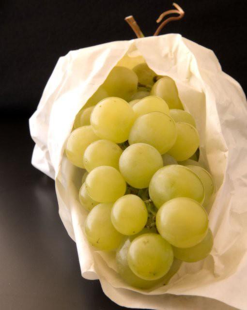 costa blanca gastronomia fantastica uva del vinalopo