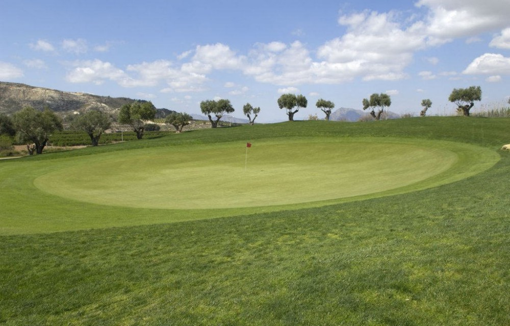 costa blanca golf la finca perfecto green del campo