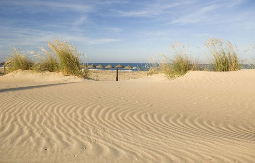 costa blanca guardamar increibles dunas de la playa