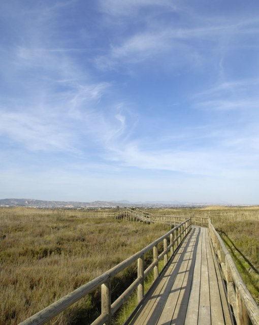 costa blanca hondo puente de madera entre el campo