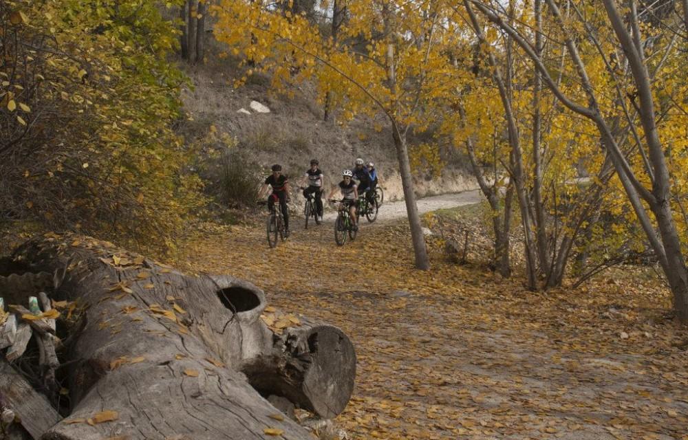 costa blanca jornadas nico terol ciclismo entre arboles