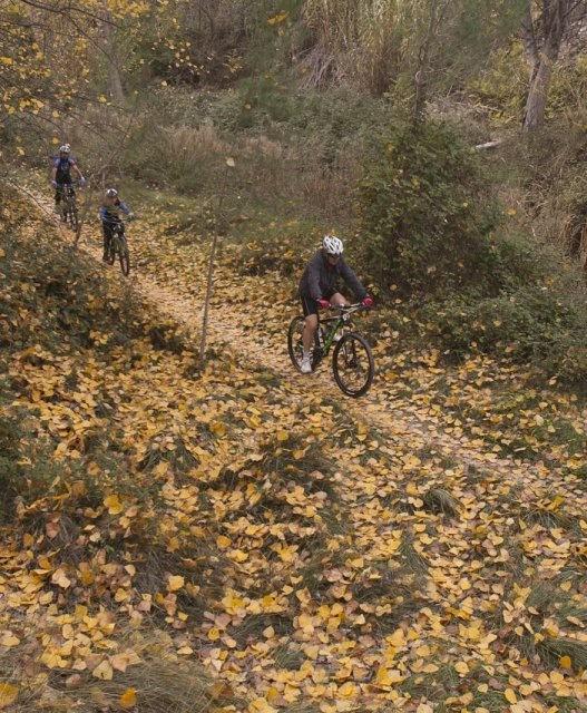 costa blanca jornadas nico terol sendero de hojas