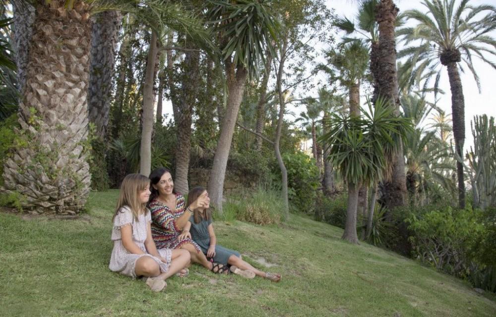 costa blanca palmeral elche familia sentada viendo las palmeras