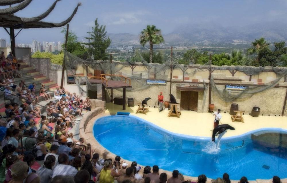 costa blanca parque atracciones benidorm mundo mar delfines