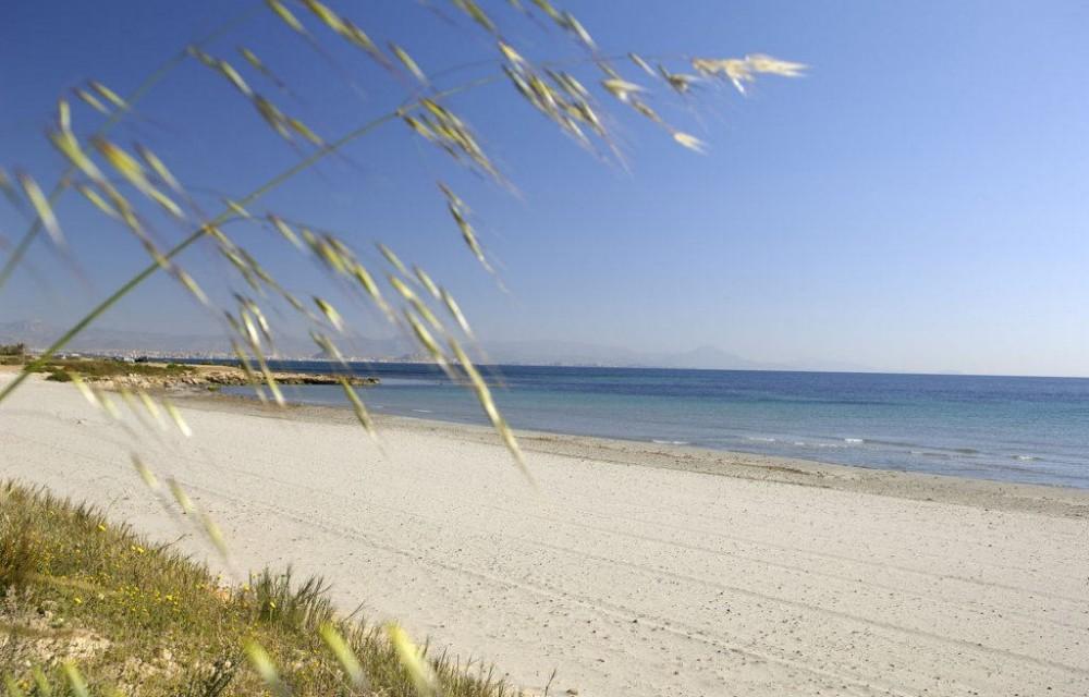 costa blanca playa arenales elche calma orilla del mar