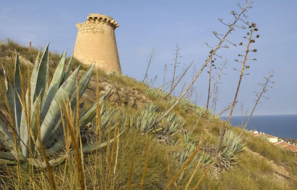 costa blanca santa pola torre de vigia romana antigua