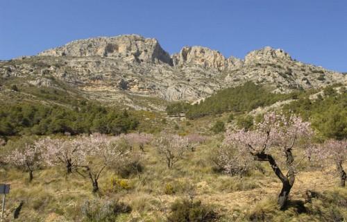 COSTA BLANCA Sierra de la Serrella