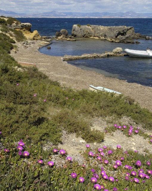 costa blanca tabarca cala bonita de la isla