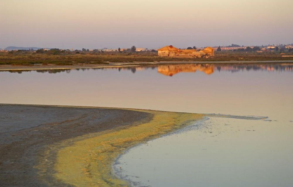 costa blanca torrevieja parque natural lagunas la mata