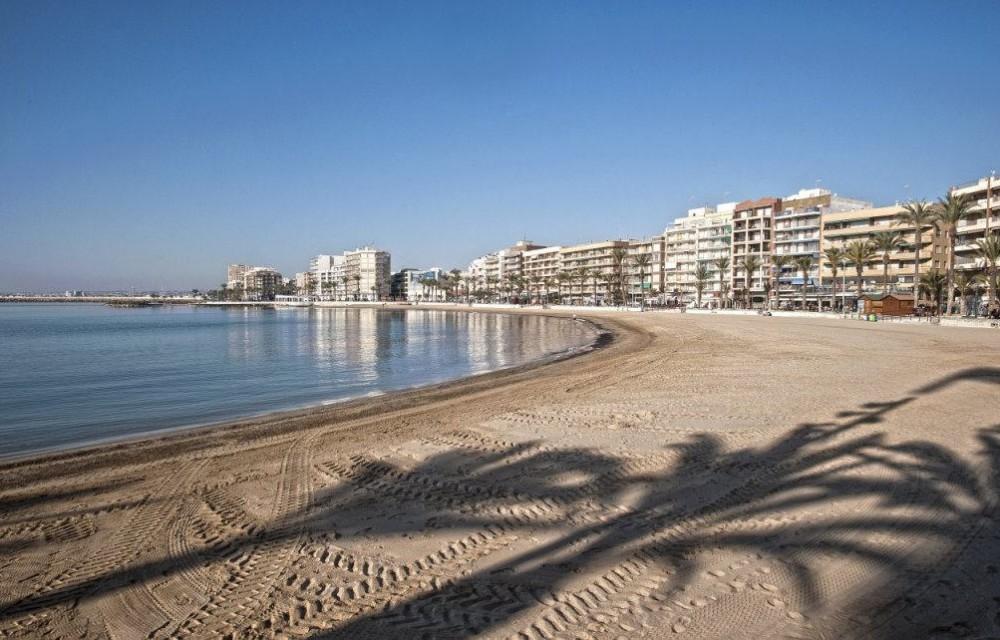 costa blanca torrevieja playa y sombras de palmera
