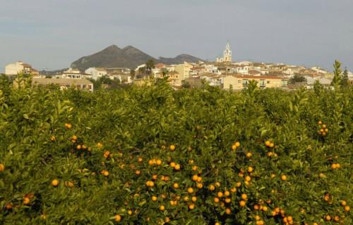 costa blanca vall del pop naranjos de parcent